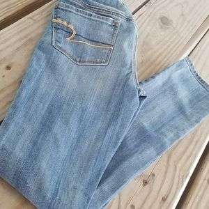 American Eagle Womens skinny stretch Jean's size 2